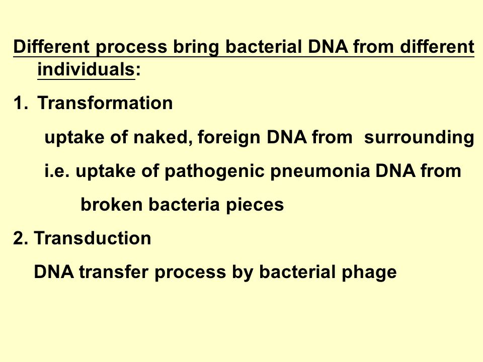 Different process bring bacterial DNA from different individuals: 1.Transformation uptake of naked, foreign DNA from surrounding i.e.