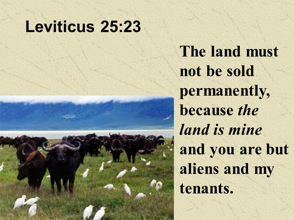 Leviticus 25:23 The land must not be sold permanently, because the land is mine and you are but aliens and my tenants.
