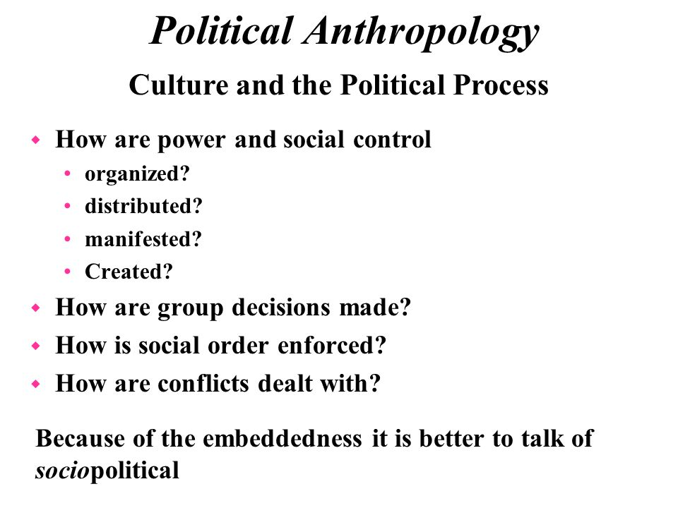 political anthropology definition