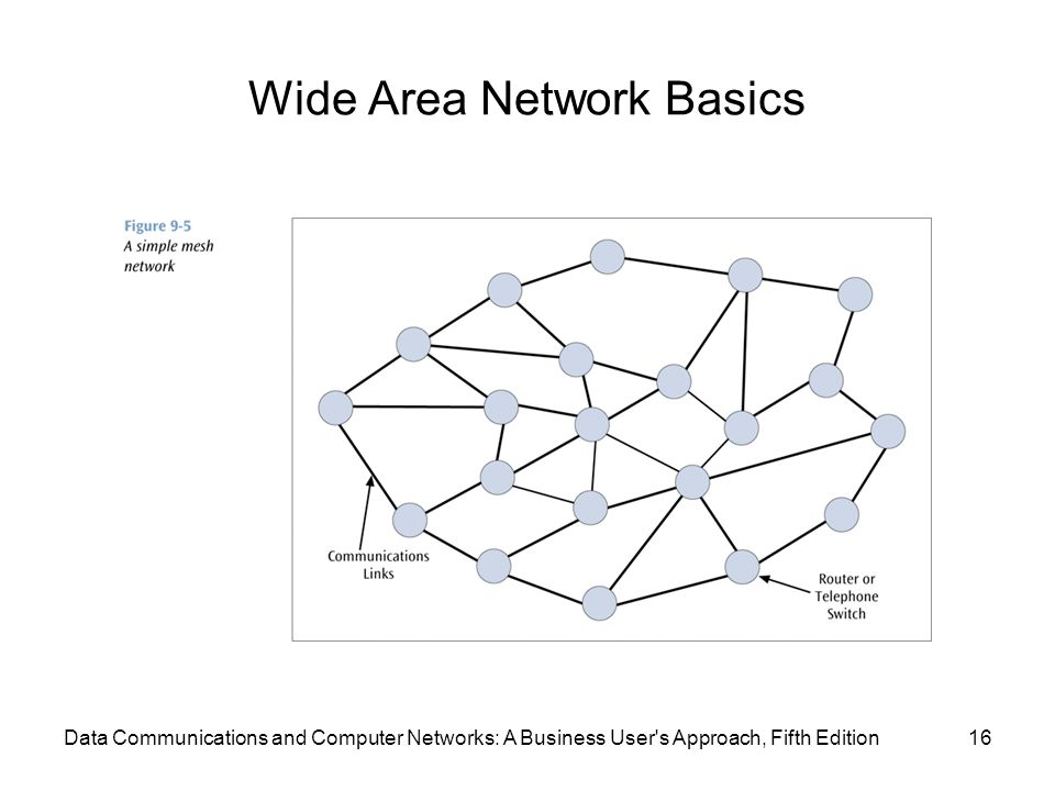 Wide Area Network Basics 16Data Communications and Computer Networks: A Business User s Approach, Fifth Edition