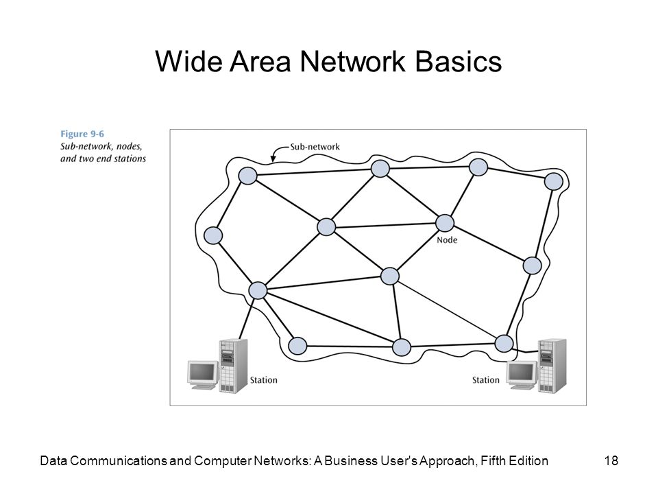 Wide Area Network Basics 18Data Communications and Computer Networks: A Business User s Approach, Fifth Edition