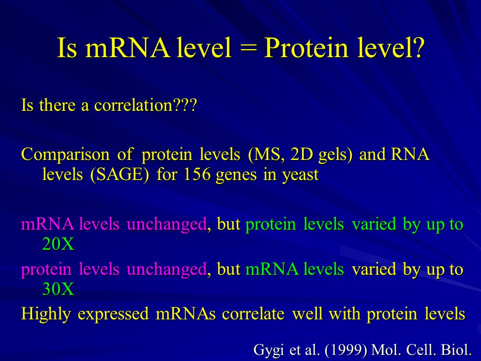 Is mRNA level = Protein level. Is there a correlation .