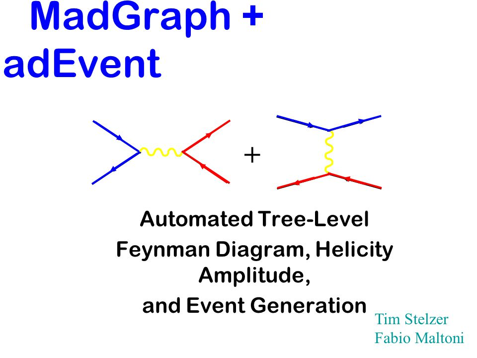 Madgraph Madevent Automated Tree Level Feynman Diagram Helicity