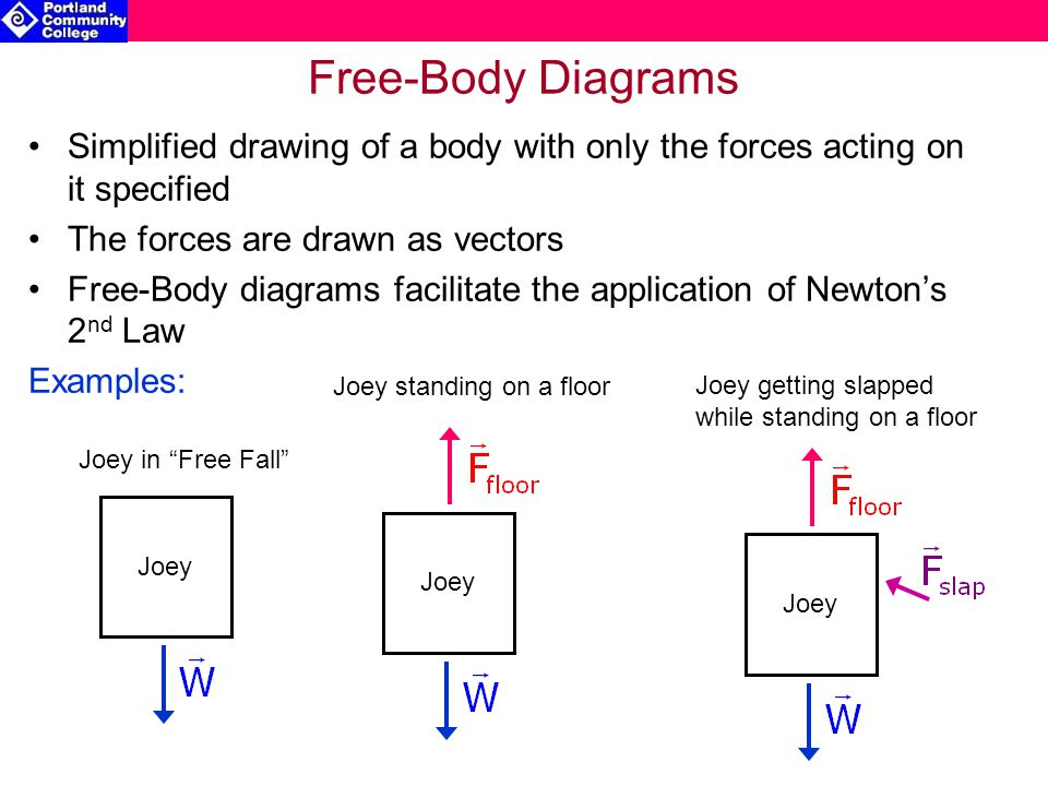 Phy 211 general physics i chapter 5 force motion i lecture notes 5 free body diagrams ccuart Choice Image