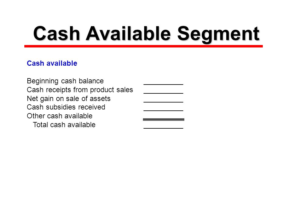 Cash Available Segment Cash available Beginning cash balance__________ Cash receipts from product sales__________ Net gain on sale of assets__________ Cash subsidies received__________ Other cash available Total cash available__________