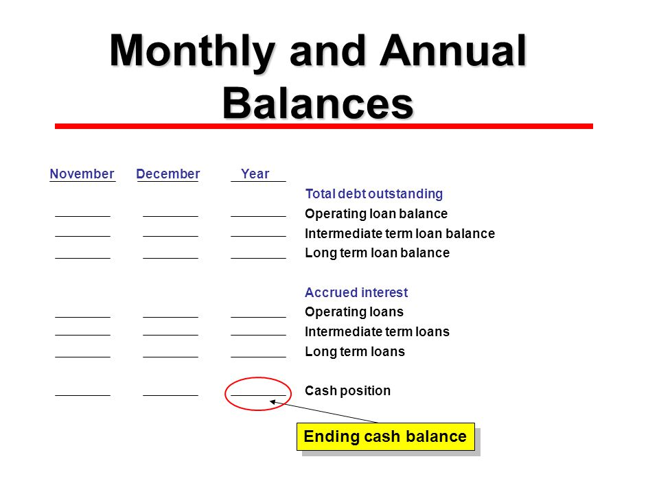 Monthly and Annual Balances NovemberDecemberYear Total debt outstanding Operating loan balance Intermediate term loan balance Long term loan balance Accrued interest $0Operating loans $0Intermediate term loans Long term loans Cash position $0 Ending cash balance
