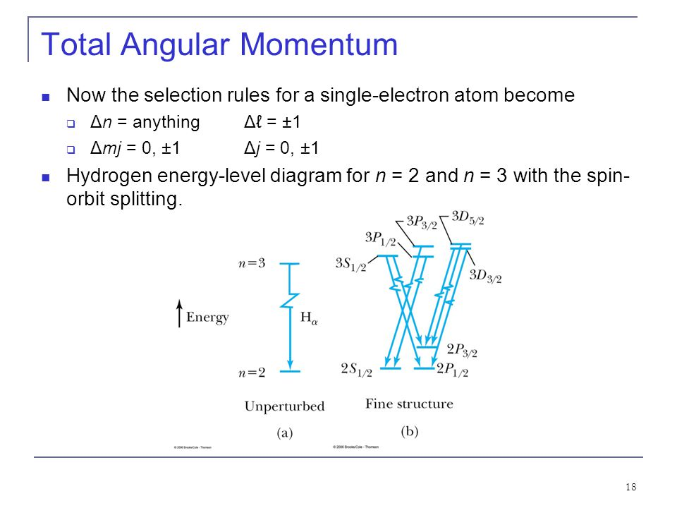 18 Total Angular Momentum Now the selection rules for a single-electron atom become  Δn = anythingΔℓ = ±1  Δmj = 0, ±1Δj = 0, ±1 Hydrogen energy-level diagram for n = 2 and n = 3 with the spin- orbit splitting.