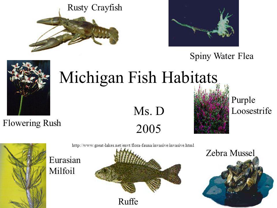 Michigan Fish Habitats Ms D Rusty Crayfish Spiny Water Flea