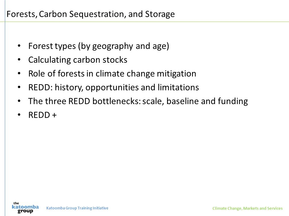 Forests, Carbon Sequestration, and Storage Forest types (by geography and age) Calculating carbon stocks Role of forests in climate change mitigation REDD: history, opportunities and limitations The three REDD bottlenecks: scale, baseline and funding REDD + Climate Change, Markets and Services Katoomba Group Training Initiative