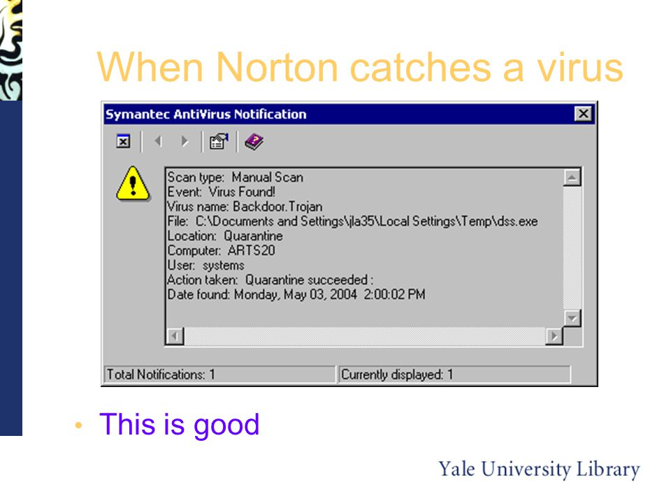 When Norton catches a virus This is good