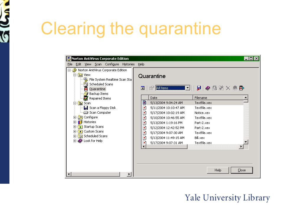 Clearing the quarantine