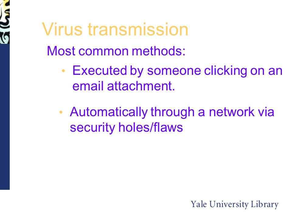 Virus transmission Most common methods: Executed by someone clicking on an  attachment.