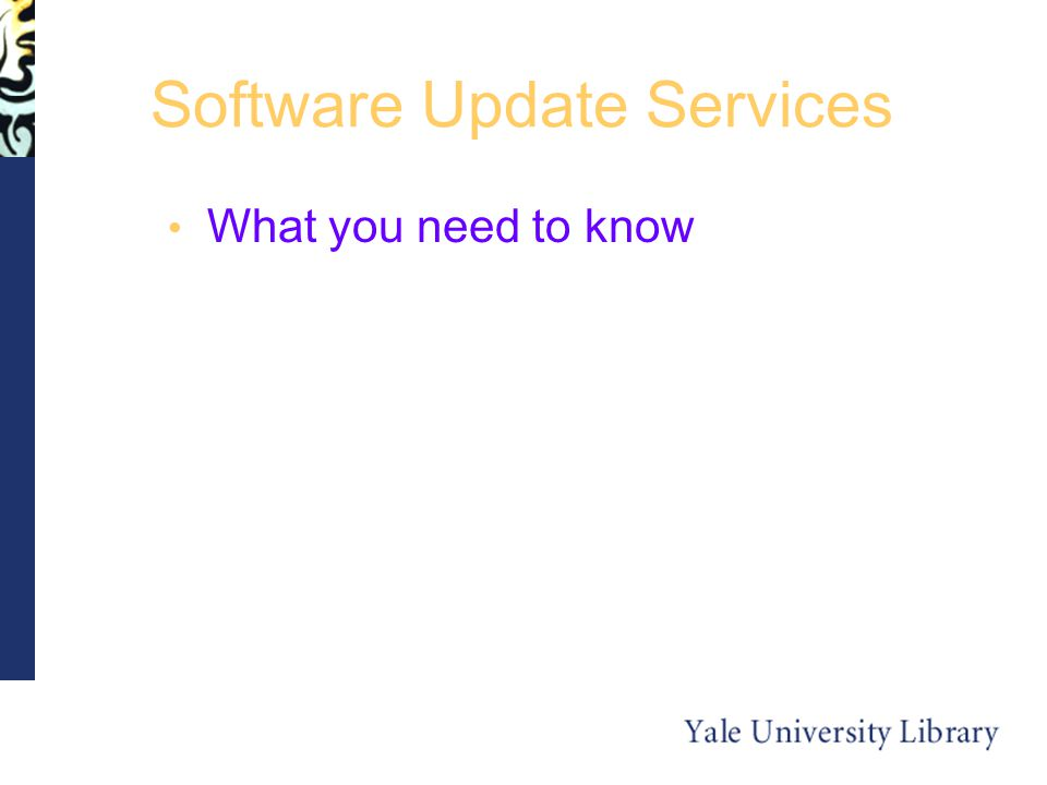 Software Update Services What you need to know