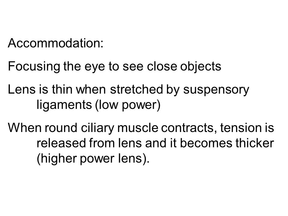 Accommodation: Focusing the eye to see close objects Lens is thin when stretched by suspensory ligaments (low power) When round ciliary muscle contracts, tension is released from lens and it becomes thicker (higher power lens).