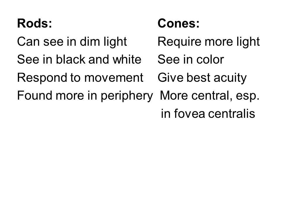 Rods:Cones: Can see in dim lightRequire more light See in black and white See in color Respond to movementGive best acuity Found more in periphery More central, esp.