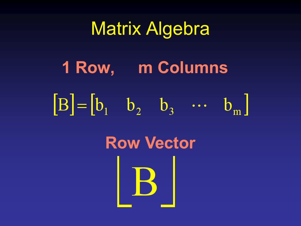 Matrix Algebra 1 Row, m Columns Row Vector