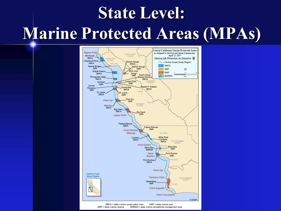 State Level: Marine Protected Areas (MPAs)