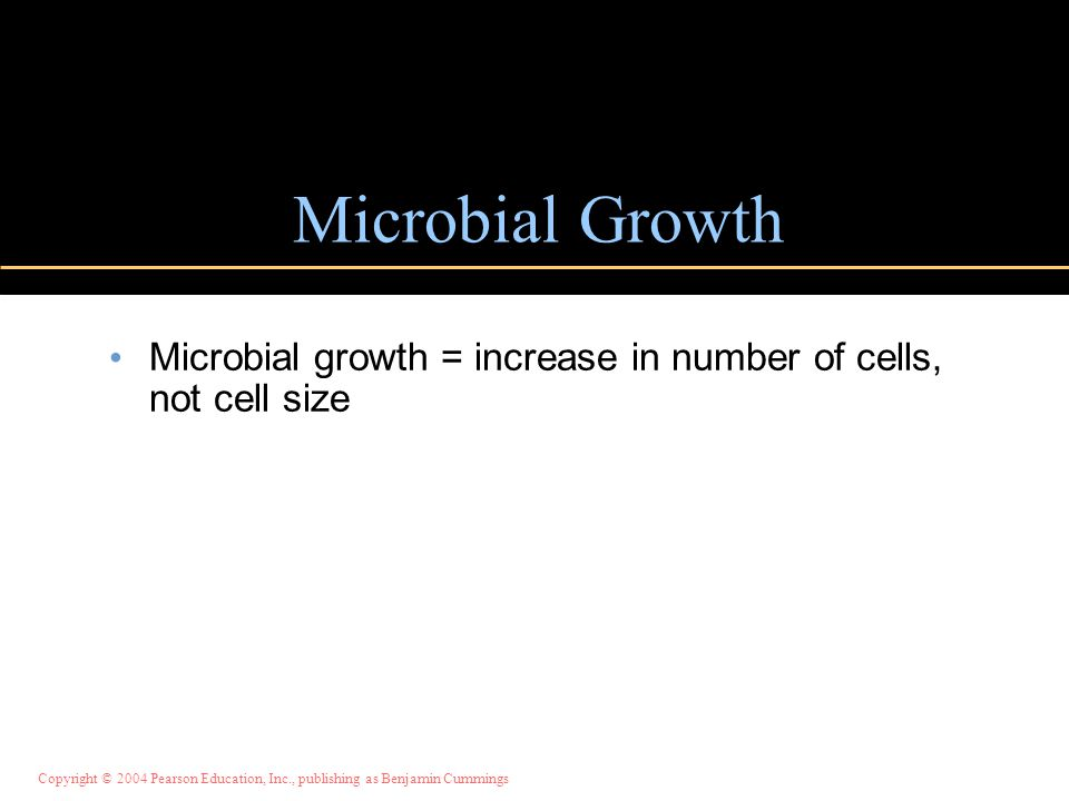 Copyright © 2004 Pearson Education, Inc., publishing as Benjamin Cummings Microbial Growth Microbial growth = increase in number of cells, not cell size