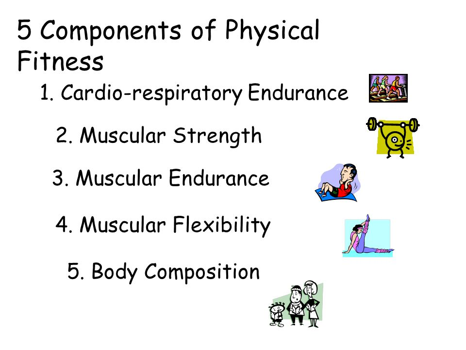 11 components of physical fitness What are the components of physical fitness a: the five components of physical fitness are cardiovascular endurance, muscular strength, muscular endurance.
