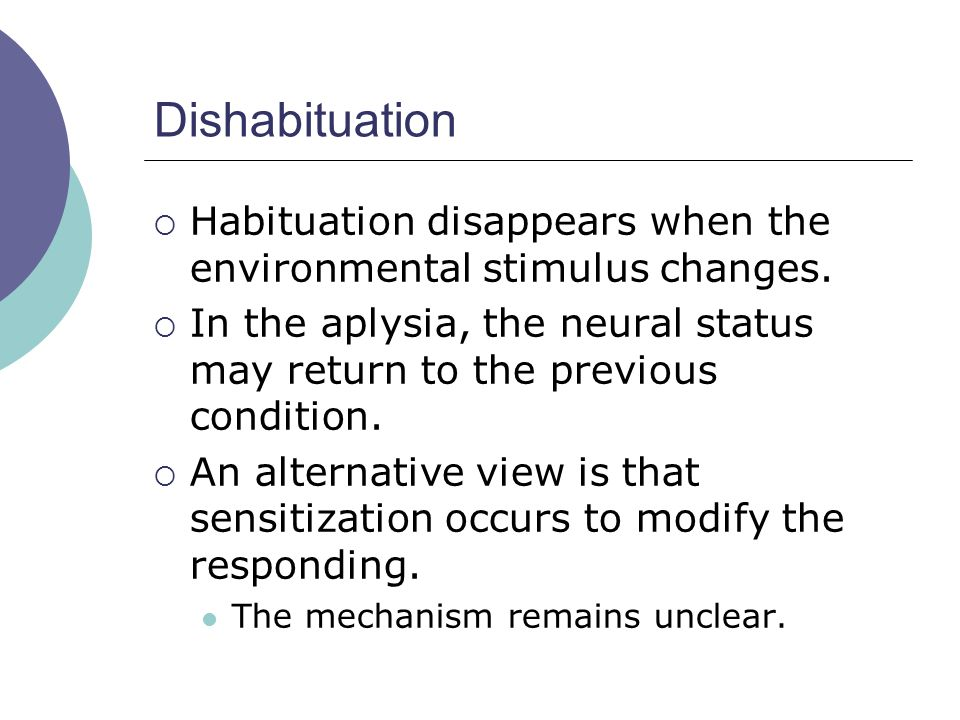 Dishabituation  Habituation disappears when the environmental stimulus changes.