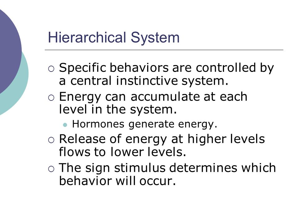 Hierarchical System  Specific behaviors are controlled by a central instinctive system.