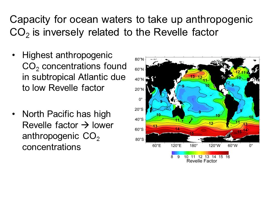 Capacity for ocean waters to take up anthropogenic CO 2 is inversely related to the Revelle factor Highest anthropogenic CO 2 concentrations found in subtropical Atlantic due to low Revelle factor North Pacific has high Revelle factor  lower anthropogenic CO 2 concentrations