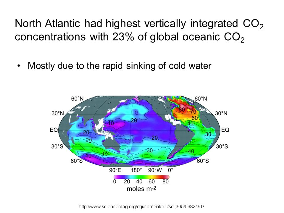 North Atlantic had highest vertically integrated CO 2 concentrations with 23% of global oceanic CO 2 Mostly due to the rapid sinking of cold water
