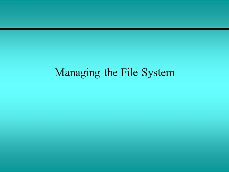 Managing the File System