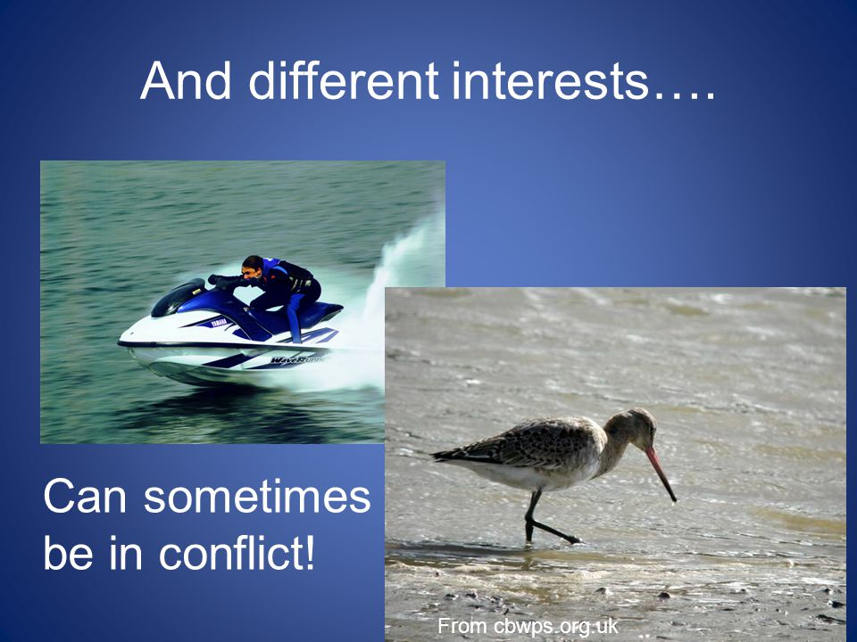 And different interests…. Oct Can sometimes be in conflict! From cbwps.org.uk