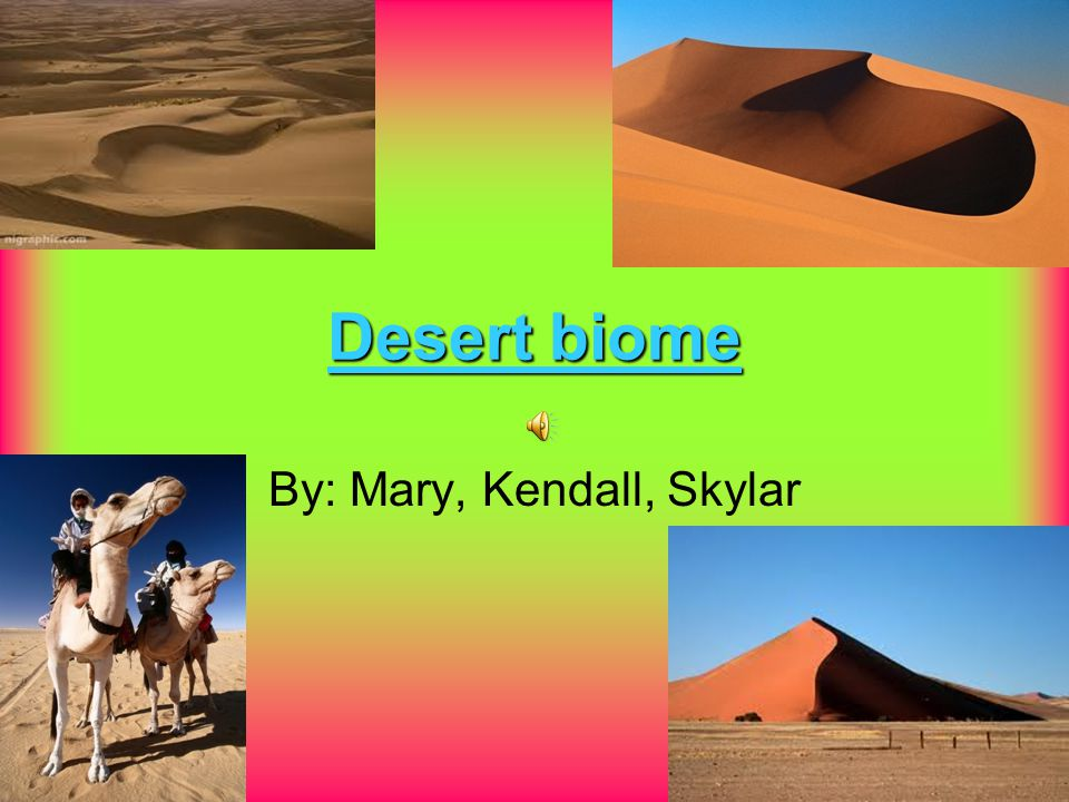 Desert biome By: Mary, Kendall, Skylar location In North