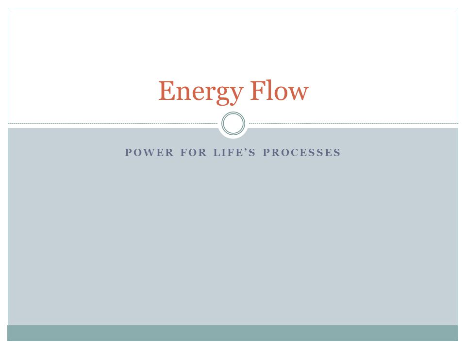 POWER FOR LIFE'S PROCESSES Energy Flow