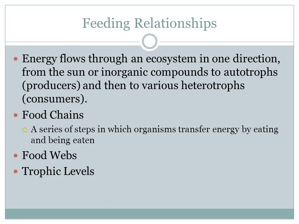Feeding Relationships Energy flows through an ecosystem in one direction, from the sun or inorganic compounds to autotrophs (producers) and then to various heterotrophs (consumers).