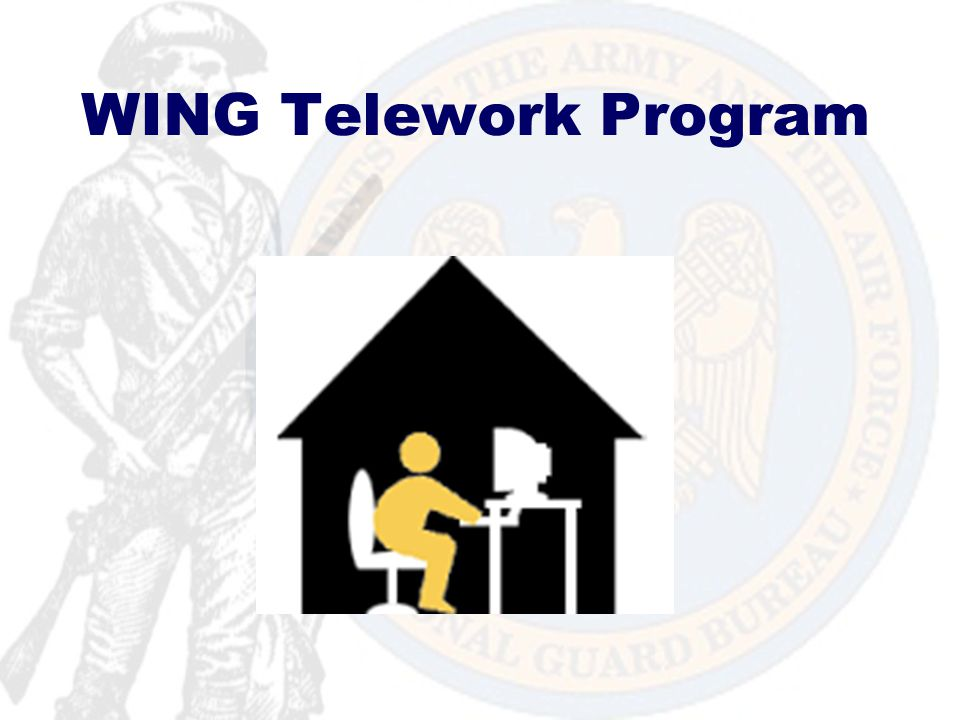 Wing Telework Program Overview References Purpose Definitions