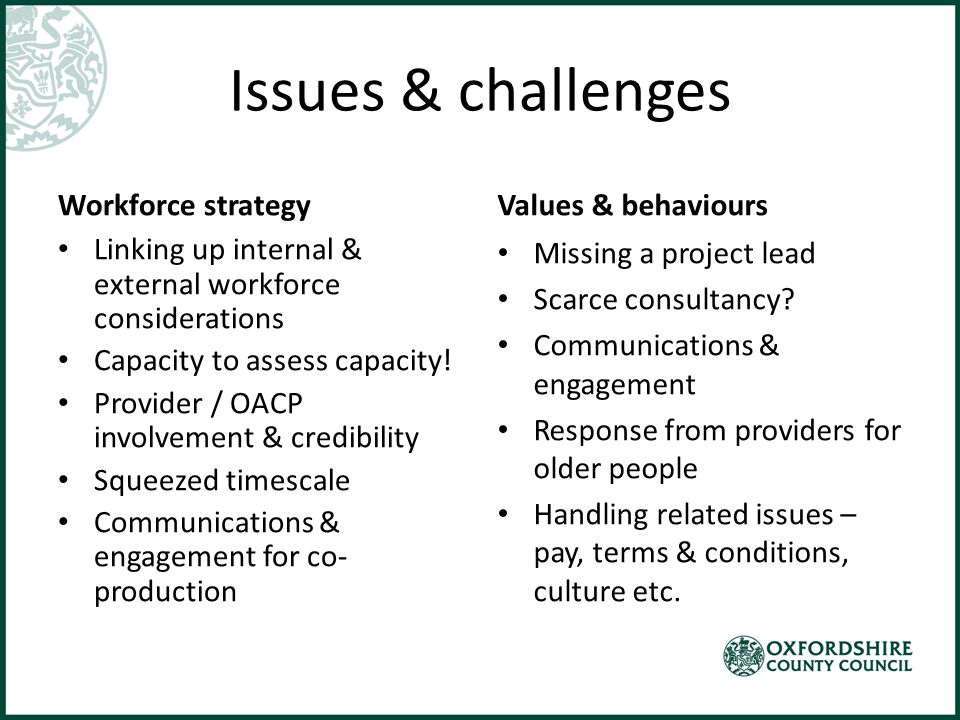 Issues & challenges Workforce strategy Linking up internal & external workforce considerations Capacity to assess capacity.