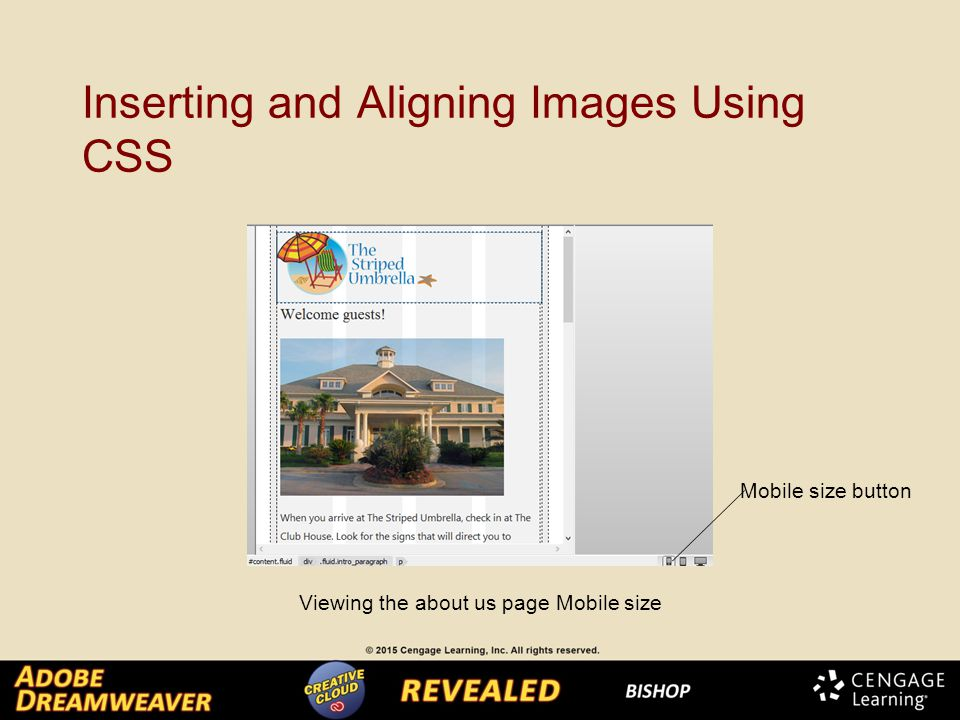 Inserting and Aligning Images Using CSS Viewing the about us page Mobile size Mobile size button