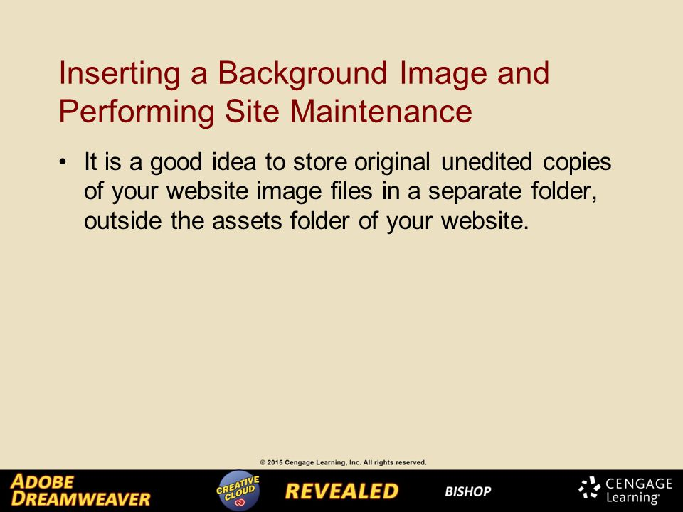 Inserting a Background Image and Performing Site Maintenance It is a good idea to store original unedited copies of your website image files in a separate folder, outside the assets folder of your website.