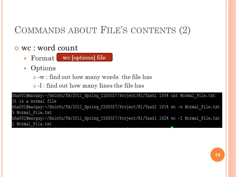 C OMMANDS ABOUT F ILE ' S CONTENTS (2) wc : word count Format Options -w : find out how many words the file has -l : find out how many lines the file has wc [options] file 19