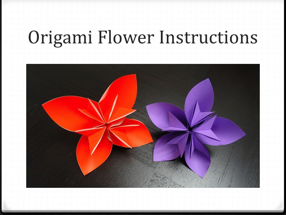1 Origami Flower Instructions