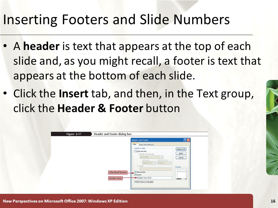 XP New Perspectives on Microsoft Office 2007: Windows XP Edition16 Inserting Footers and Slide Numbers A header is text that appears at the top of each slide and, as you might recall, a footer is text that appears at the bottom of each slide.