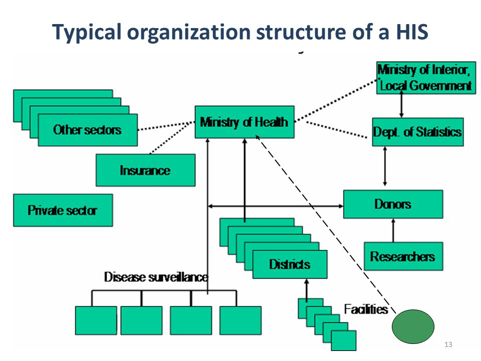 13 Typical organization structure of a HIS 13