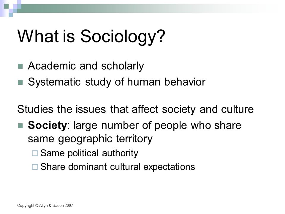 Copyright © Allyn & Bacon 2007 What is Sociology.