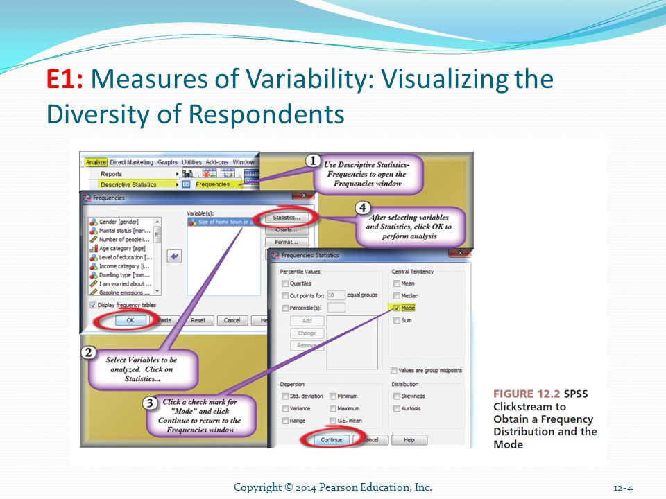 12-4 E1: Measures of Variability: Visualizing the Diversity of Respondents