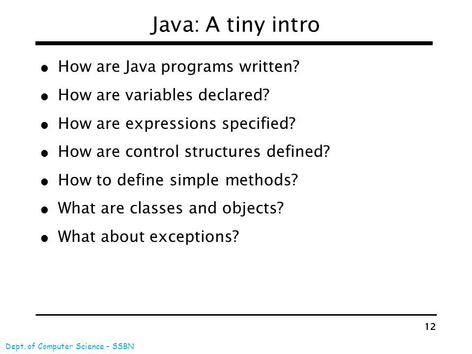 An Introduction to Java Programming Language Vishnuvardhan M