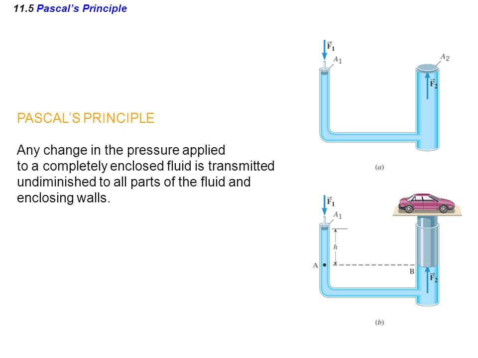 11.5 Pascal's Principle PASCAL'S PRINCIPLE Any change in the pressure applied to a completely enclosed fluid is transmitted undiminished to all parts of the fluid and enclosing walls.