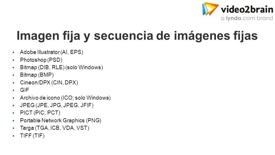 Adobe Media Encoder Formatos de importación  Vídeo y