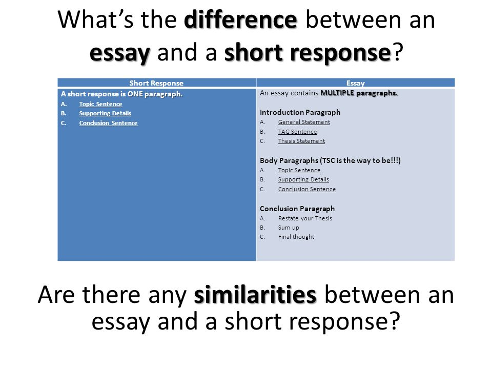 difference essayshort response What's the difference between an essay and a short response.