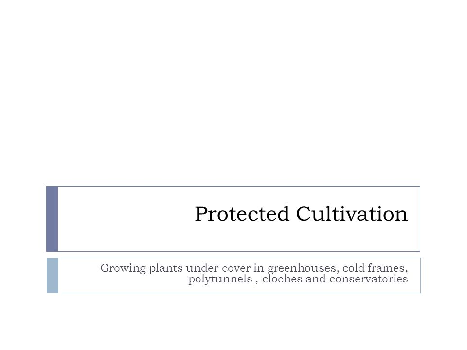 Protected Cultivation Growing plants under cover in greenhouses ...