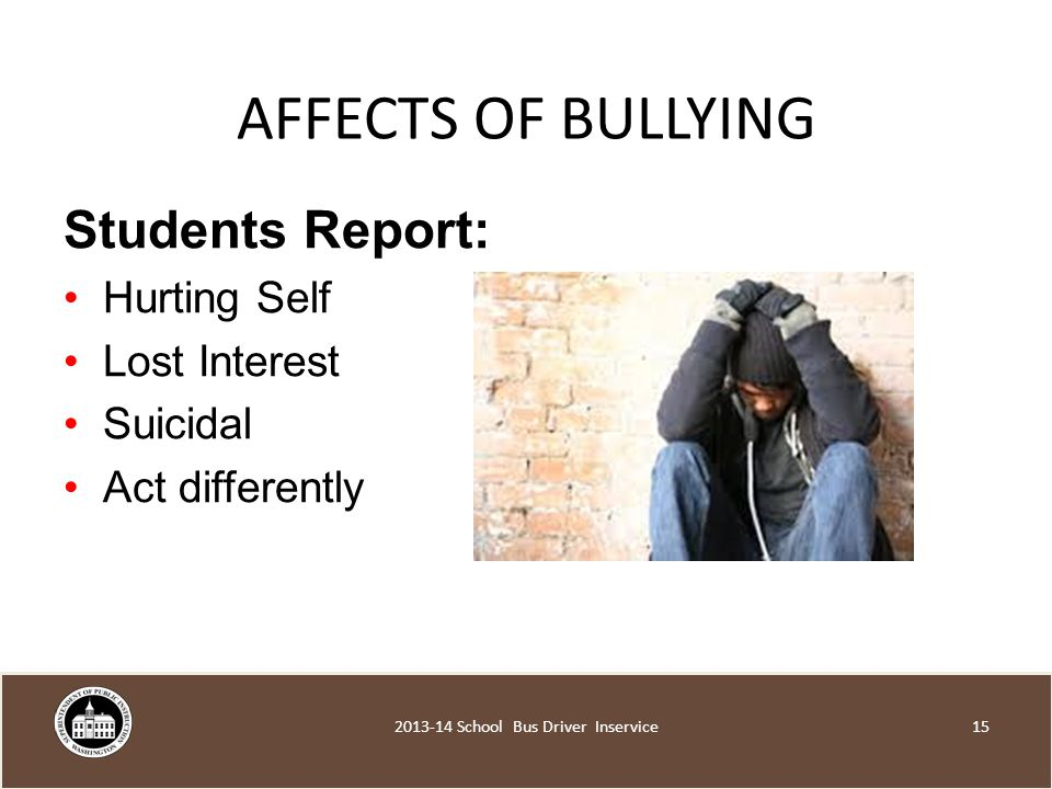 AFFECTS OF BULLYING Students Report: Hurting Self Lost Interest Suicidal Act differently School Bus Driver Inservice