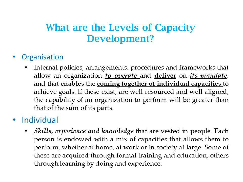 What are the Levels of Capacity Development.
