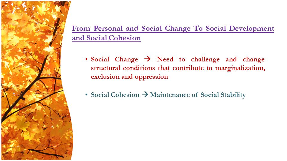 Social Change  Need to challenge and change structural conditions that contribute to marginalization, exclusion and oppression Social Cohesion  Maintenance of Social Stability From Personal and Social Change To Social Development and Social Cohesion